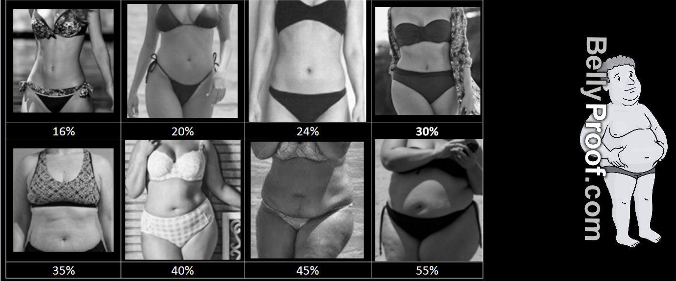 body fat percentage chart women