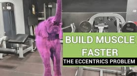 how to build muscle faster